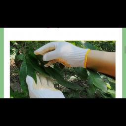 Găng tay len hạt nhựa
